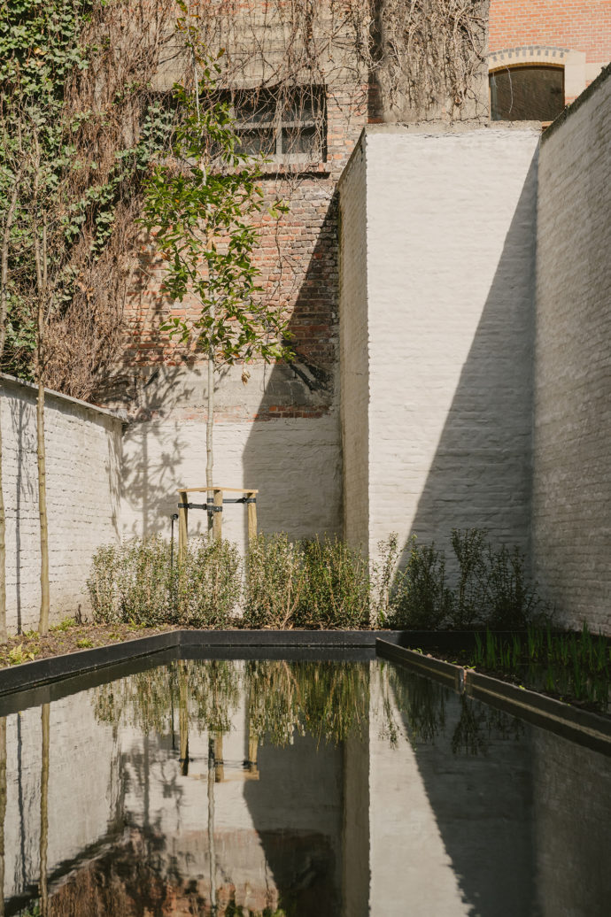 Swimming pond, spa at Hotel August Antwerp