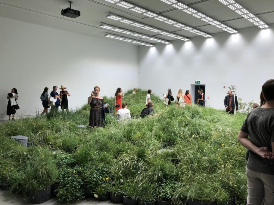 Biennale 2018 Australian Pavilion Stylepark