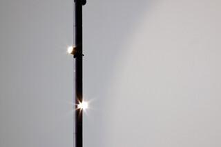 2278 colibrì  von  Martinelli Luce