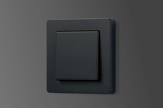 A Flow switch graphite black  by  JUNG