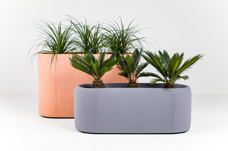 BuzziPlanter  by  BuzziSpace