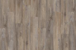 Santa Cruz Oak 59823  by  IVC Commercial
