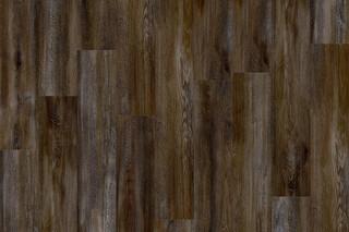 Santa Cruz Oak 59963  von  IVC Commercial