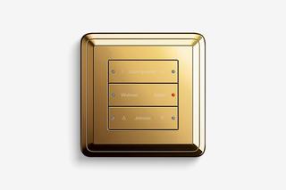 Pushbutton sensor 3 brass  by  Gira