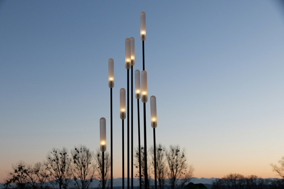 Lichtschilf