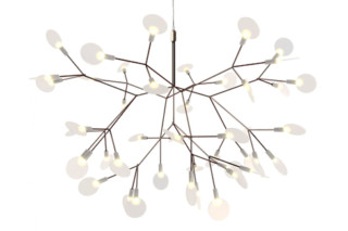 Heracleum II Small  by  Moooi
