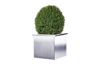 Akzent plant pot  by  MWE