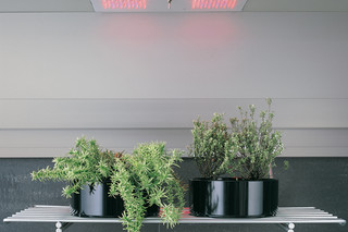 Greenhouse  von  Arclinea