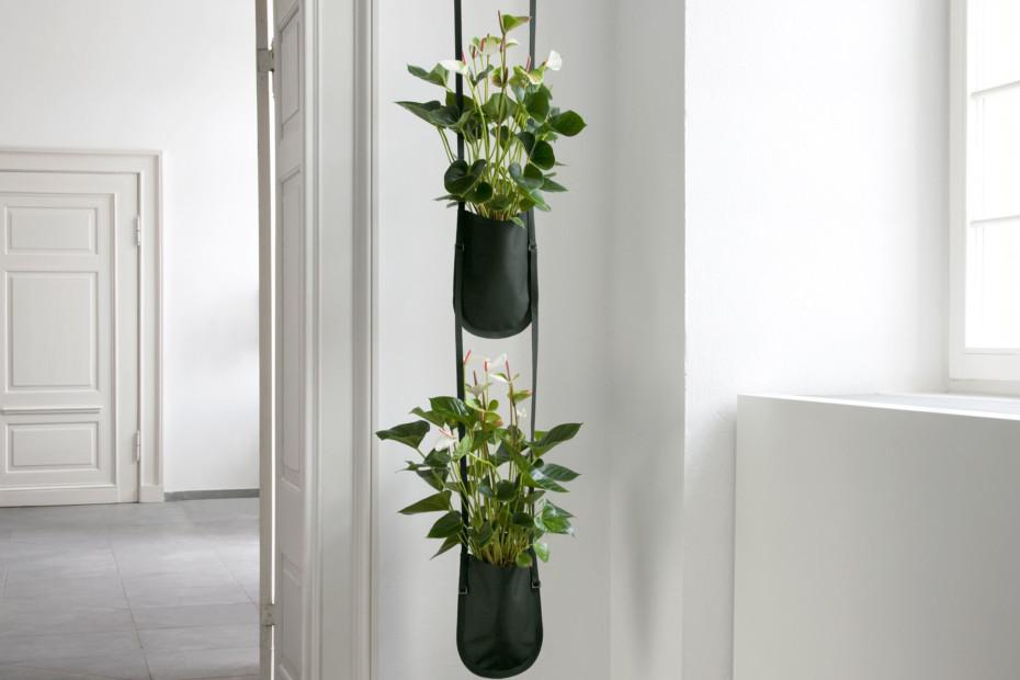 Plant Bag S