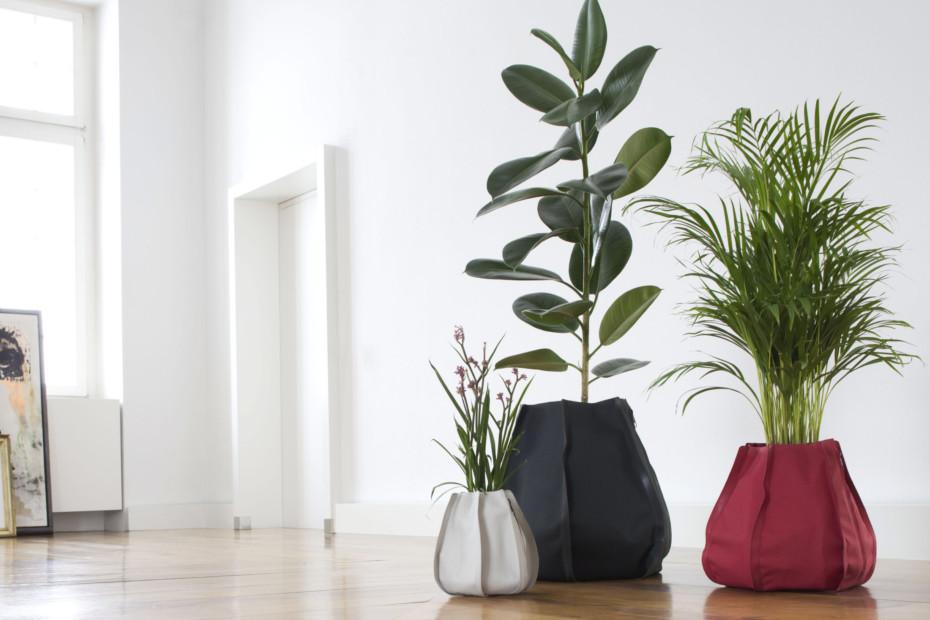 Plant Sack