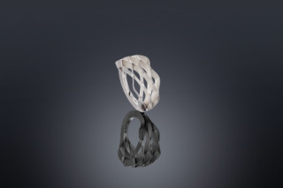 Cell ring  by  Biegel
