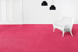 Now Carnation  by  Bolon