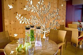 Hotel Fasching, Austria-Fischbach  by  BRUAG