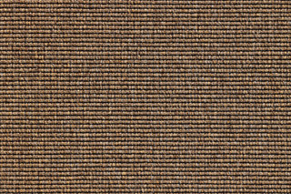 Eco 1 6605  by  Carpet Concept