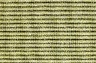 Eco 1 6633  by  Carpet Concept