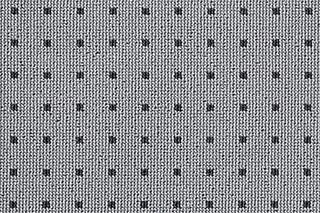 Isy  von  Carpet Concept