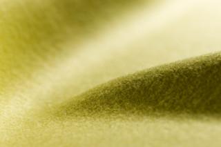 Lain  von  Carpet Concept