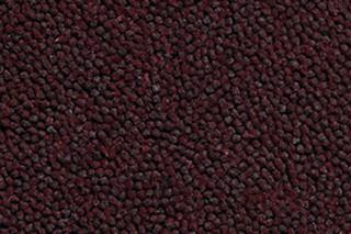 Lux 3000 1728  by  Carpet Concept