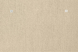 Lyn 22 Sandstone  by  Carpet Concept