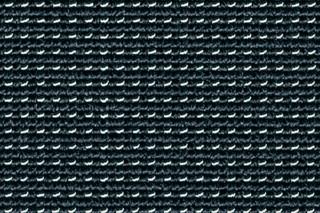 Net Rips 5 - Caligo  von  Carpet Concept