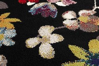 Beiras Bloom  by  Casalis