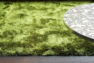Galaxy grün  von  Casalis