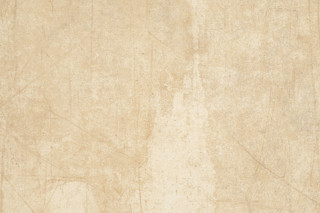 Graffiti Beige  by  Ceramiche Refin