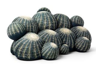 Canapé Cactus  von  Baleri Italia
