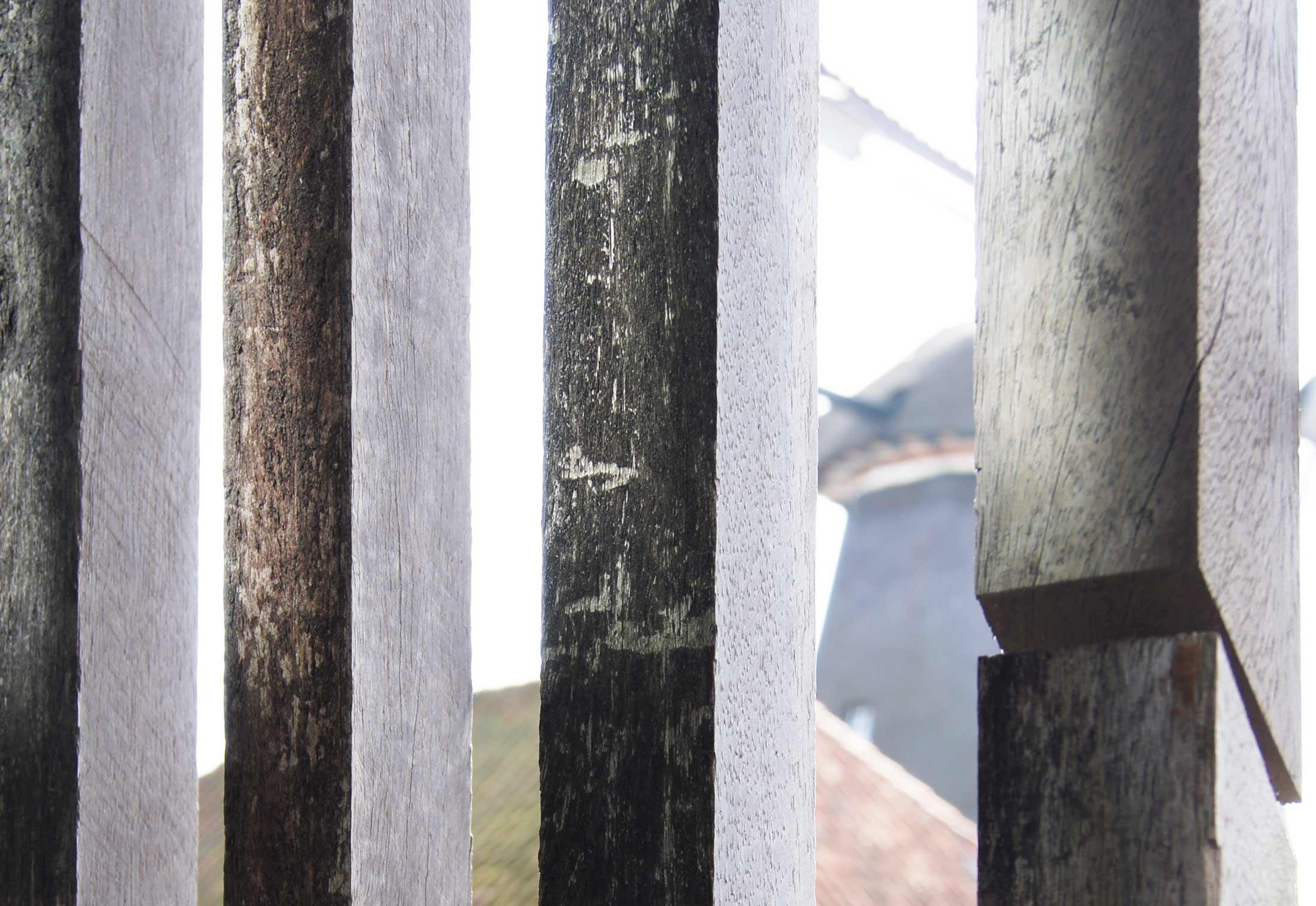Interieur Mit Holz Lamellen Haus Design Bilder: Modern