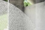 Gecko Crypta Orbit  by  Création Baumann