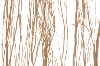 Thicket  by  3form