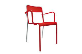 Amila armchair  by  Danese