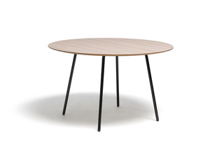 Paper table round  by  David design