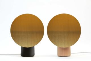 Shelf  von  David design