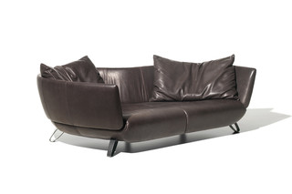 DS-102 Sofa  von  de Sede