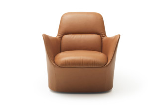 DS-110 armchair  by  de Sede