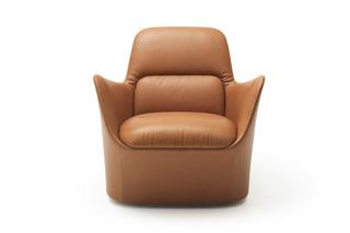 DS-110 Sessel  von  de Sede