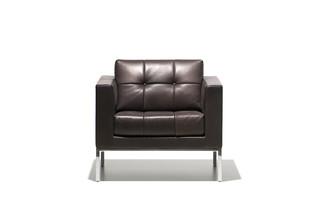 DS-159 Sessel  von  de Sede