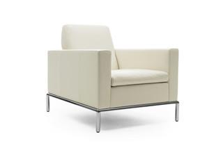 DS-4 armchair  by  de Sede