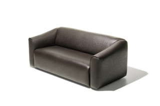 DS-47 sofa  by  de Sede