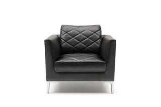 DS-48 Sessel  von  de Sede