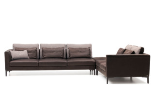 DS-49 sofa  by  de Sede