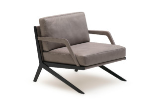 DS-60 armchair  by  de Sede