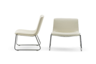 DS-717 lounge chair  by  de Sede