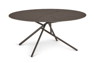 MANGROVE coffee table oval  by  DEDON