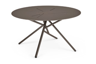 MANGROVE coffee table  by  DEDON