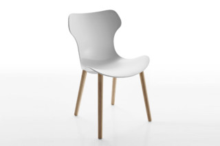 PAPILIO SHELL with wooden legs  by  B&B Italia