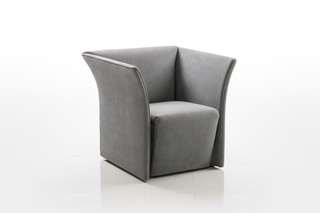 Magnat armchair  by  Brühl