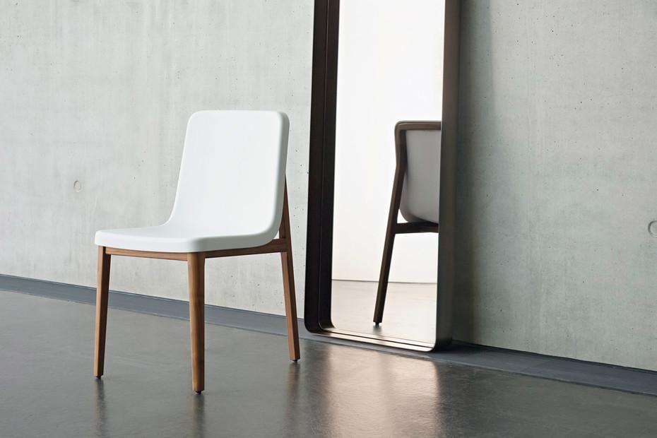 Sedan chair plastic