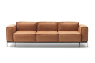 DS-21 sofa  by  de Sede